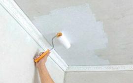 10 лучших красок для стен и потолка. Акриловые, латексные и водоэмульсионные составы